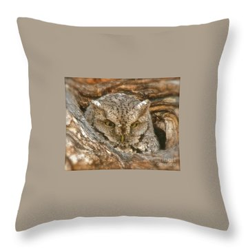 Screech Owl On Spring Creek Throw Pillow