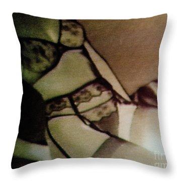 Screen #30 Throw Pillow