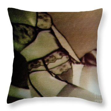 Screen #30 Throw Pillow