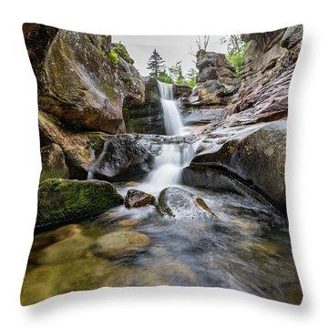 Screw Auger Falls II Throw Pillow