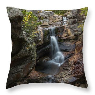 Screw Auger Falls In Autumn Throw Pillow