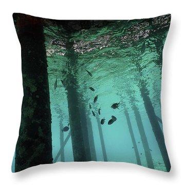 Scuba Bonaire Throw Pillow