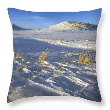 Sculpted By The Wind Throw Pillow by Mike  Dawson
