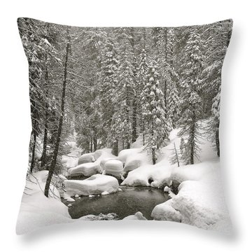 Sculpted Throw Pillow