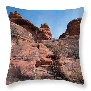 Sculpted Sandstone Throw Pillow