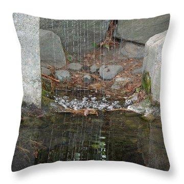 Sculpture Garden II Throw Pillow by Suzanne Gaff