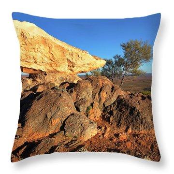 Throw Pillow featuring the photograph Sculpture Park Broken Hill by Bill Robinson