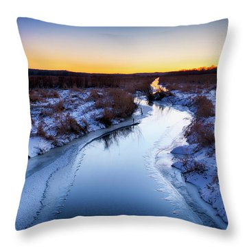 Scuppernong  Throw Pillow