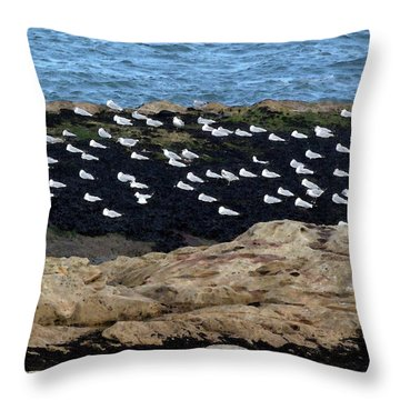 Sea Birds At Rest Throw Pillow