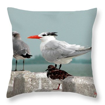 Throw Pillow featuring the photograph Sea Birds by Donna Brown