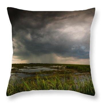 Sea Breeze Cell Throw Pillow by Allen Biedrzycki
