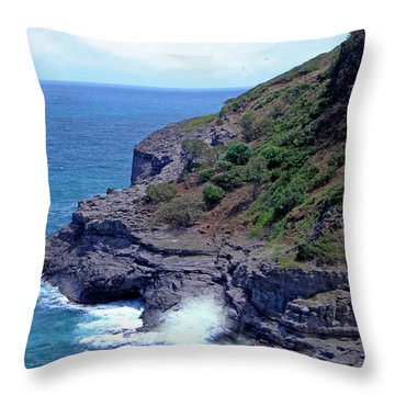 Sea Cave And Nesting Boobies Throw Pillow by Frank Wilson