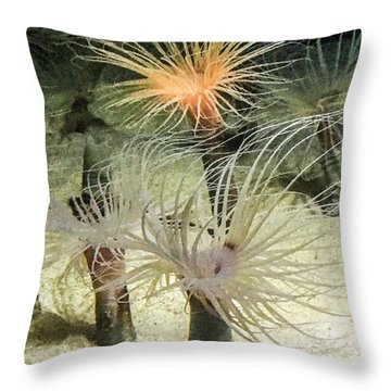 Sea Flower Throw Pillow by Daniel Hebard