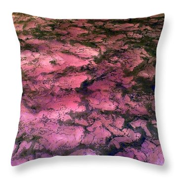 Sea Foam Pinkish Black Throw Pillow