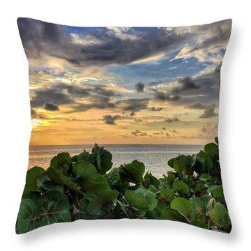 Sea Grape Sunrise Throw Pillow