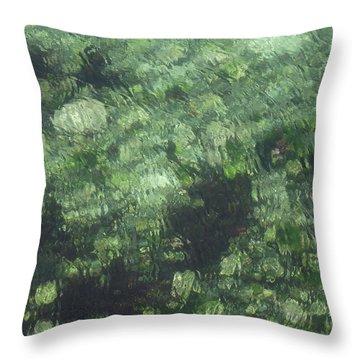 Sea Green Abstract Throw Pillow