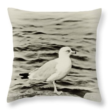 Sea Gull In Sepia Throw Pillow