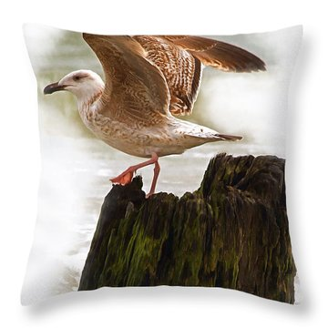 Sea Gull Throw Pillow by Marion Johnson