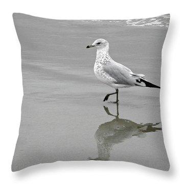 Sea Gull Walking In Surf Throw Pillow