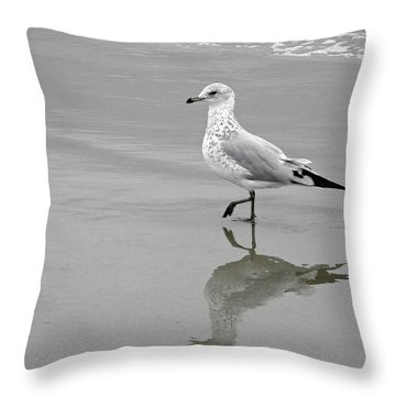 Sea Gull Walking In Surf Throw Pillow