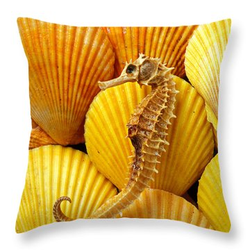 Sea Horse And Sea Shells Throw Pillow by Garry Gay