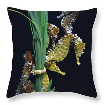 Throw Pillow featuring the photograph Sea Horse by Joan Reese