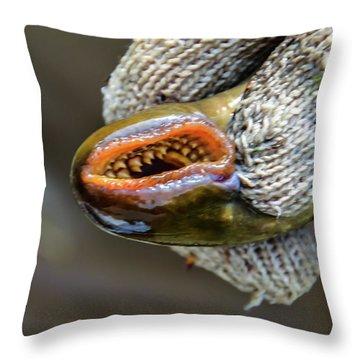 Sea Lamprey Throw Pillow