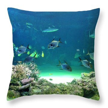 Sea Life Throw Pillow by Kay Gilley