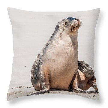 Sea Lion 1 Throw Pillow by Werner Padarin