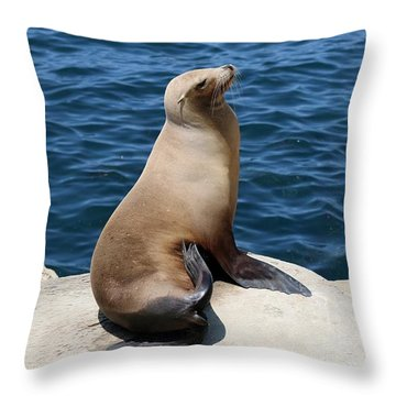 Throw Pillow featuring the photograph Sea Lion At La Jolla Cove  by Christy Pooschke