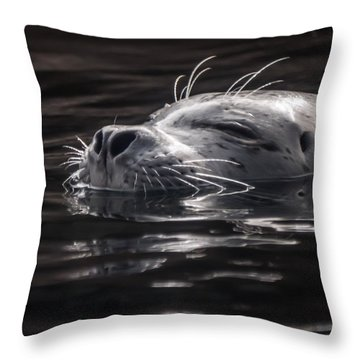 Sea Lion Basking In The Light Throw Pillow
