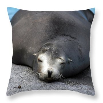 Sea Lion Snooze Throw Pillow