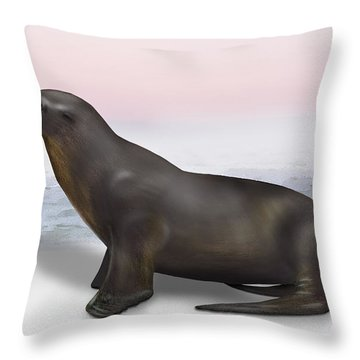 Sea Lion Zalophus Californianus - Marine Mammal - Seeloewe Throw Pillow