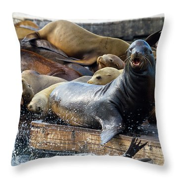Sea Lions On The Floating Dock In San Francisco Throw Pillow