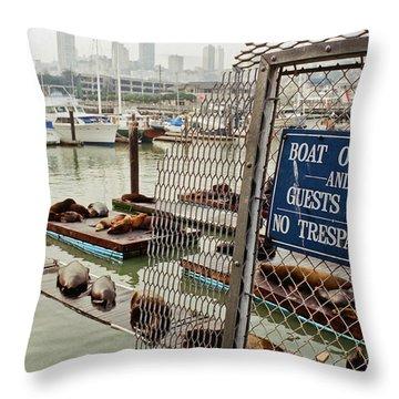 Sea Lions Take Over, San Francisco Throw Pillow