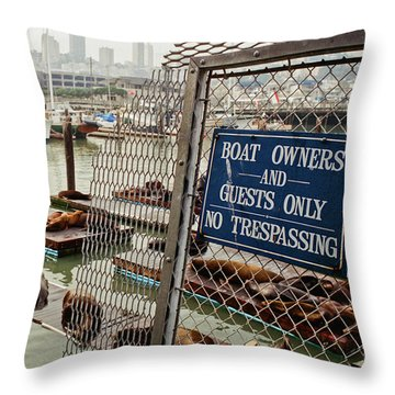 Sea Lions Take Over, San Francisco Throw Pillow