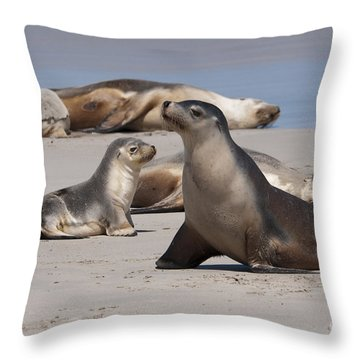 Throw Pillow featuring the photograph Sea Lions by Werner Padarin