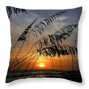 Sea Oats Throw Pillow by Dan Wells