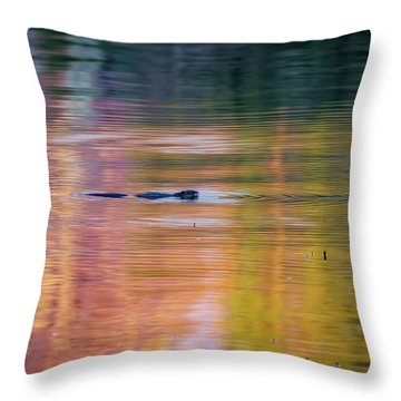 Sea Of Color Throw Pillow by Bill Wakeley