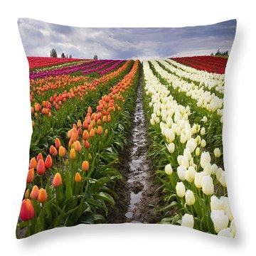Sea Of Color Throw Pillow