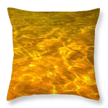 Sea Of Gold Throw Pillow