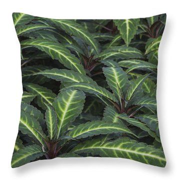 Sea Of Leaves Throw Pillow