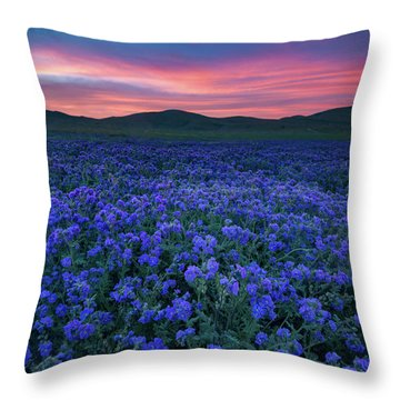 Sea Of Phacelia At Sunrise, Carrizo Plain National Monument Throw Pillow