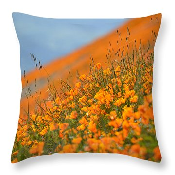 Sea Of Poppies Throw Pillow by Kyle Hanson