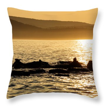 Sea Of Seals Throw Pillow