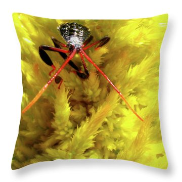 Throw Pillow featuring the photograph Sea Of Yellow by Donna Brown