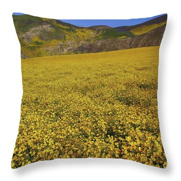 Throw Pillow featuring the photograph Sea Of Yellow Up In The Temblor Range At Carrizo Plain National Monument by Jetson Nguyen