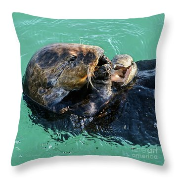 Sea Otter Munching On A Clam Throw Pillow