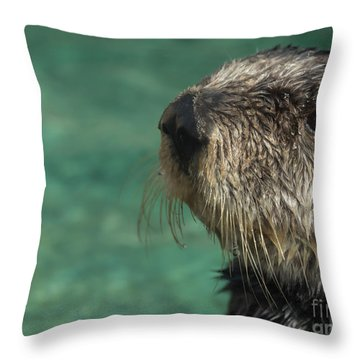 Sea Otter Stare Down Throw Pillow