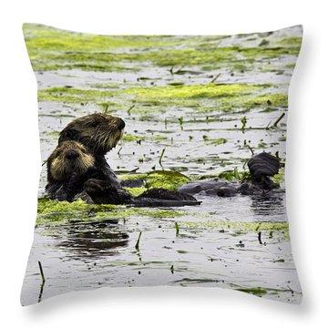 Sea Otters 1 Throw Pillow